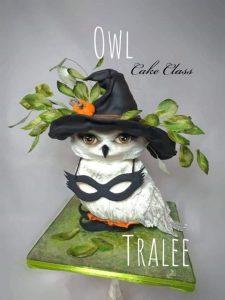 Owl Cake Class